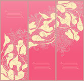 Decorative floral banners- line drawing calla Royalty Free Stock Image
