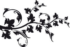 Decorative floral branch black and white. Royalty Free Stock Images