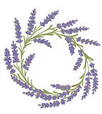 Decorative floral colored garland Royalty Free Stock Image