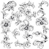 Decorative Floral Design Elements Royalty Free Stock Image