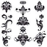 Decorative Floral Design Elements Stock Image