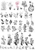 Decorative floral design elements (black and white) Stock Photo
