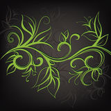 Decorative floral design. Vector illustration. Decorative floral design on a dark gray background Royalty Free Stock Images