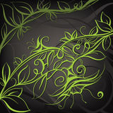 Decorative floral design. Vector illustration. Decorative floral design on a gray background Royalty Free Stock Photos