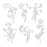 Decorative floral elements for design vector illustration