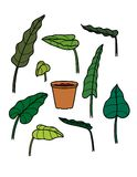 Decorative floral elements of different leaves stock illustration