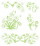 Decorative floral elements on the white. Stock Images