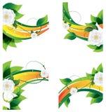 Decorative floral elements Stock Images