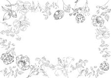 Decorative floral frame (black and white) Stock Photo