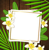Decorative floral frame with tropical flowers. And leaves on a wooden background Royalty Free Stock Photography
