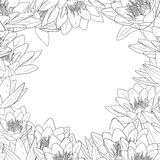 Decorative floral frame. White lily flowers vector illustration Royalty Free Stock Photography