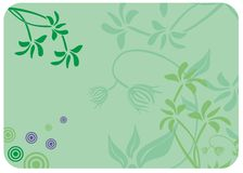 Decorative floral green background. Vector Royalty Free Stock Images