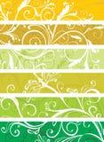 Decorative floral panels. Set of decorative floral panels Royalty Free Stock Images