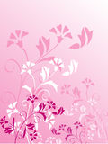 Decorative floral pattern, background Royalty Free Stock Photography