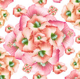 Decorative Floral Pattern Royalty Free Stock Photos