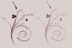 Decorative flourish Stock Photos