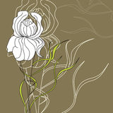 Decorative flower. Universal template for greeting card, web page, background Stock Images