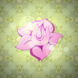 Decorative flower Royalty Free Stock Images