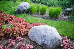 Decorative flower bed in a garden with rocks and plants Stock Photography