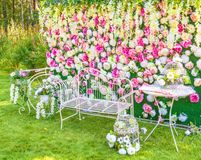 Flower composition. The Decorative flower garden composition Stock Photo