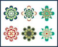 Decorative Flower Pack Stock Image
