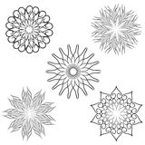 Decorative Flower Pack Royalty Free Stock Photography