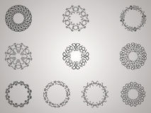 Decorative Flower Pack Stock Images