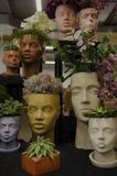 Decorative flower pot on a wooden shelf. stock image