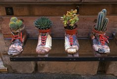 Decorative flower pots in old shoes. Decorative flower pots in old vintage shoes, Montepulciano, Italy stock photo