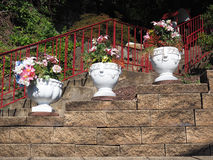 Decorative Flower Pots Royalty Free Stock Images