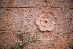 Decorative flower scalped on rock wall stock image