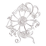 Decorative flower template Royalty Free Stock Photos