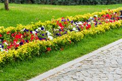 Decorative flowerbeds with flowers and bushes in landscape park. Decorative flowerbeds with flowers and bushes in the city`s landscape park stock images