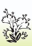 Decorative flowers Stock Images