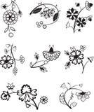 Decorative flowers Stock Photo