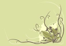 Decorative flowers background Royalty Free Stock Photos