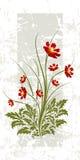 Decorative flowers in bloom stock illustration