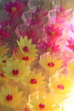 Decorative flowers candles Royalty Free Stock Image