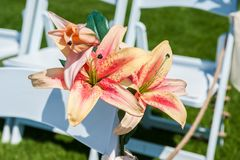 Decorative flowers on the ends. Pink and orange Stargazer lily flowers embellish the white rows of chairs at the wedding ceremony venue stock photo