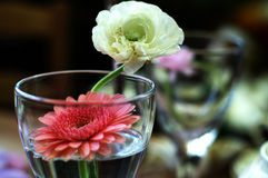 Decorative flowers in glass. Close up of decorative blooming flowers in glass royalty free stock photos