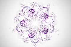 Decorative fractal abstract flower on white background Royalty Free Stock Image
