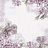 Decorative frame with blossoming cherry or sakura stock illustration