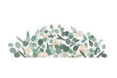 Decorative frame or border element with rose flowers and eucalyptus. Decorative frame or border element with white rose flowers and eucalyptus. Greeting, wedding Royalty Free Stock Image