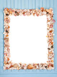 Decorative frame from different shells and mussels Royalty Free Stock Photography