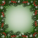 Decorative frame with fir branches. Berries and snowflakes for use in your design Royalty Free Stock Images