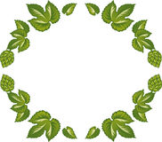Decorative frame of green leaves and hop cones. Stock Images