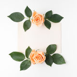 Decorative frame with orange roses and green leaves. Flat lay. Top view Stock Photos