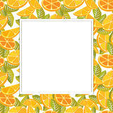 Decorative frame of oranges. Stock Photos