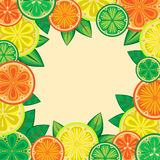 Decorative frame of oranges, lemons and limes Stock Image