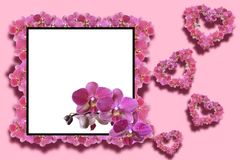 Decorative frame with orchids. Square frame decorated with orchids with space for text with hearts made of orchid flowers on a pink monophonic background Stock Photos